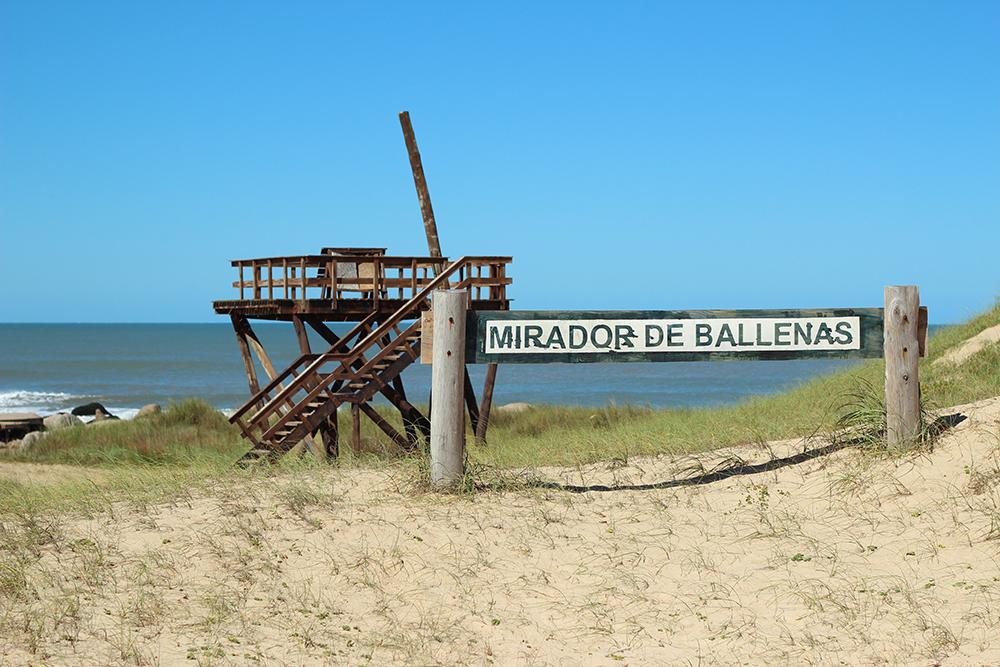 Mirador de Ballenas en Playa Grande