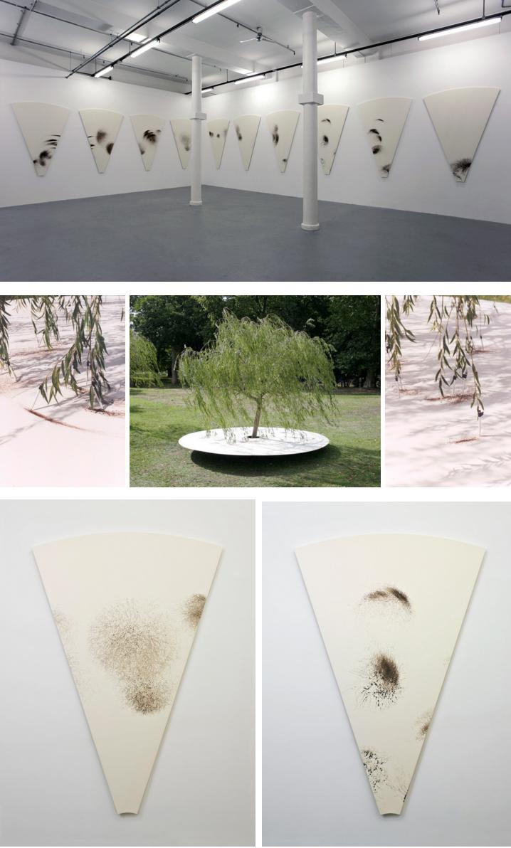 Tim Knowles Dibujos de Árboles Tree Drawings Circular Weeping Willow Drawing